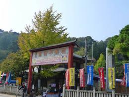 高幡不動尊菊祭り200910-1