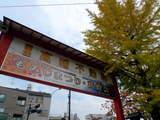 高幡不動081115-7