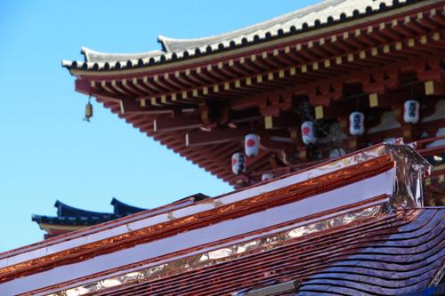 高幡不動尊201012-5