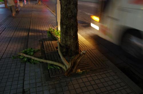 那覇へ201108-11