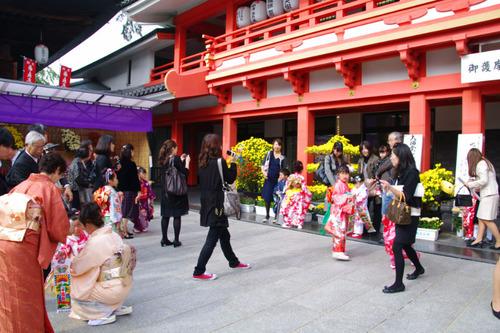 高幡不動尊201011-3