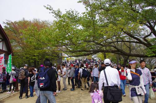 高尾山20110430-9