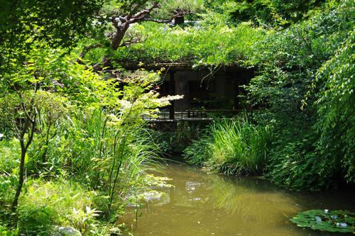 百草園201006-5