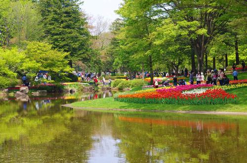 昭和記念公園201404-3