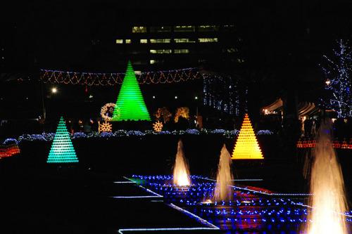 昭和記念公園イルミネーション201012-12