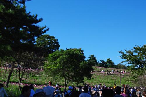 昭和記念公園201010-7