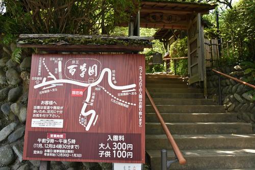 京王百草園201506-12