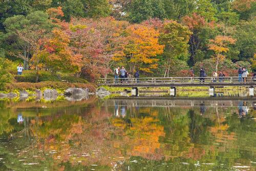昭和記念公園201511-2