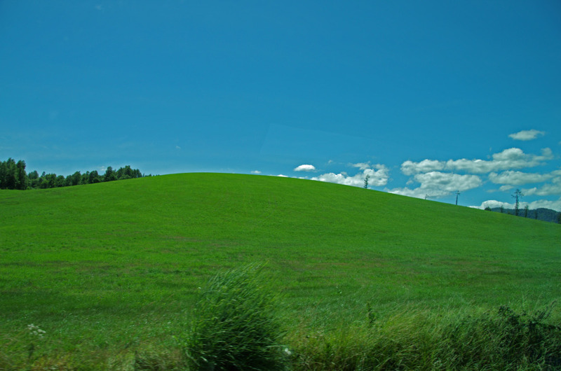 富良野の丘