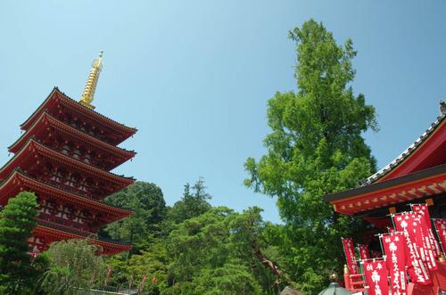 高幡不動201407-2