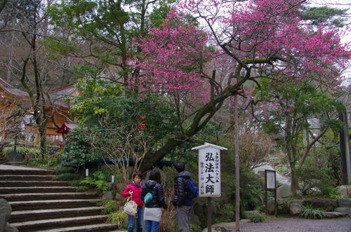 高幡不動201203-5