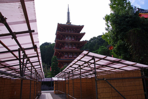 高幡不動尊20101016-8