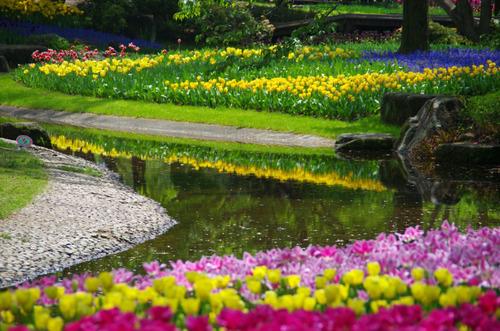 昭和記念公園20120428-7
