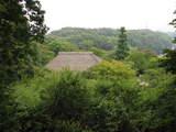 百草園夏-3