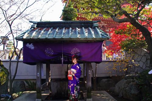 高幡不動尊201011-11