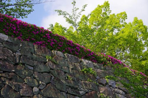 伊賀上野201105-4