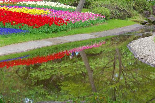 昭和5記念公園201404-5