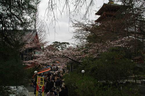 高幡不動尊20100328-3