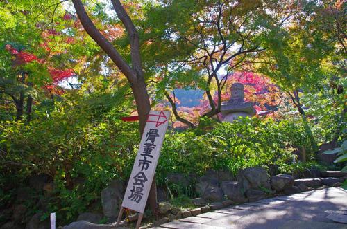 高幡不動201311-4