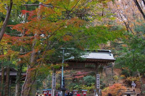 高尾山201111-15