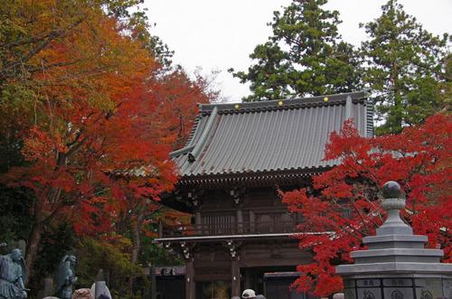 高尾山201111-12