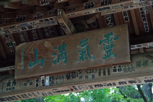 高尾山大天狗小天狗2010-12
