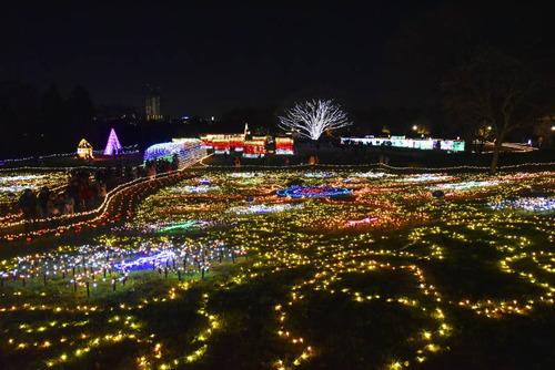 昭和記念公園201512-6