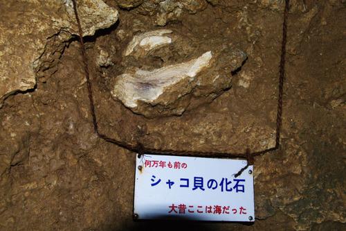 石垣島201008-7