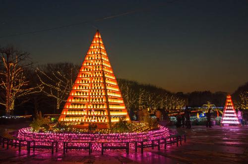 昭和記念公園201312−1
