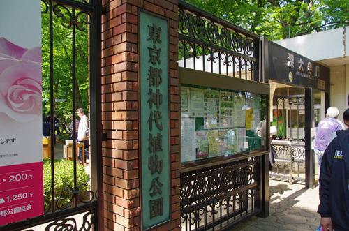 神代植物公園201305-7