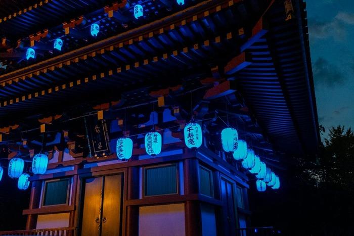 高幡不動尊ブルーライトアップ2018