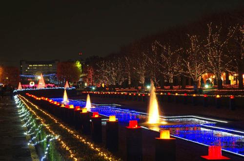 昭和記念公園201312−2