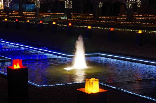 昭和記念公園201312-5