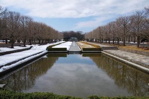 昭和記念公園201402-1