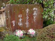 高幡不動尊枝垂梅-小1