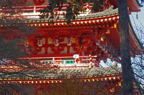 高幡不動201312-10