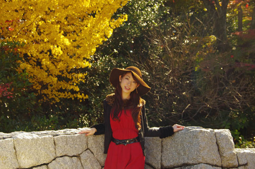 高幡不動尊201211-11