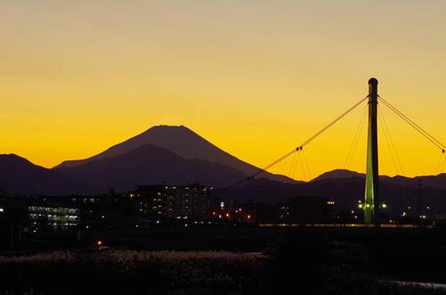 高幡不動201112-12