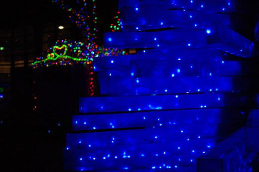 2009クリスマス-5