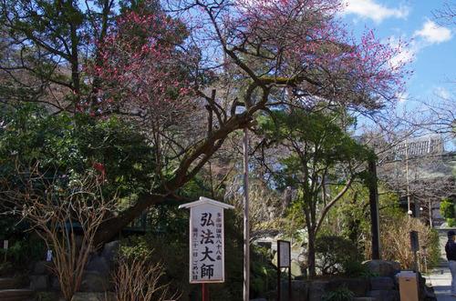 高幡不動201302-2