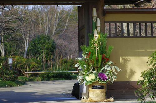 昭和記念公園201212-14