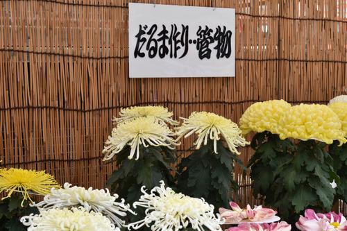 高幡不動尊201511-4