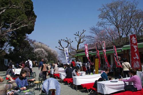 百草園梅まつり201003-2