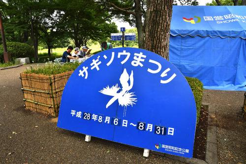 昭和記念公園201608-8