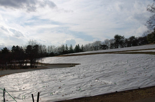 昭和記念公園201401-8