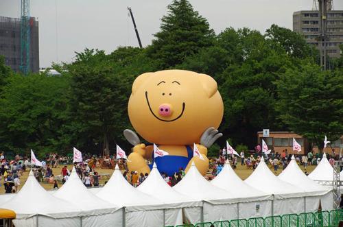 昭和記念公園201305-16