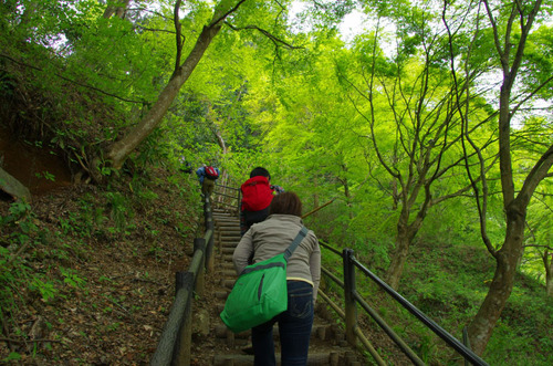 高尾山20110430-1