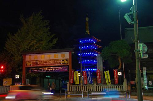 高幡不動尊ブルーライトアップ2012-9