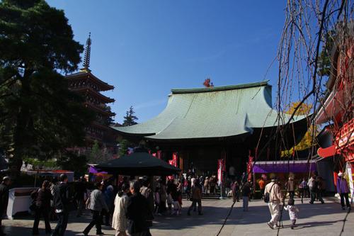 高幡不動尊201011-13