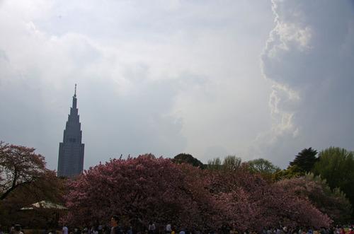 新宿御苑201104-9